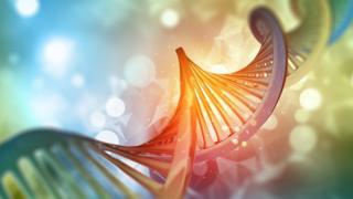 Ilustração das hélices representando o DNA