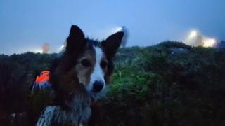 Jess in mist on hill