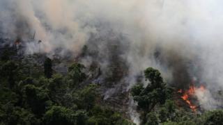 亞馬遜雨林伐木工和農民燒荒