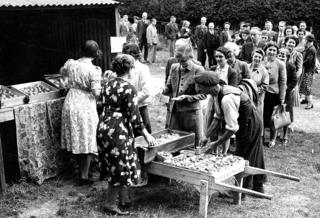 Bank of England staff buying fruit at Hurstbourne Camp, Hampshire, 1942