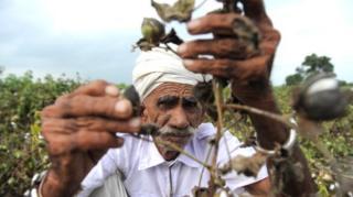ખેડૂતની તસવીર