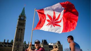 Canadian flying a national flag with a marijuana leaf instead of a maple leaf