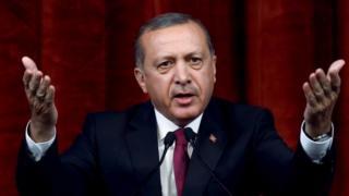 Turkish President Recep Tayyip Erdogan. Photo: 29 July 2016
