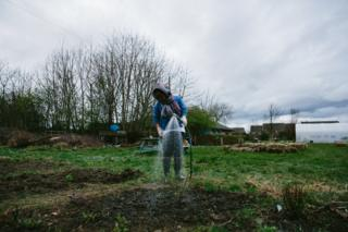 A participant waters plants with a hose on the allotment