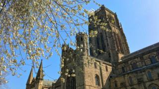 Cathedral tower with blossom