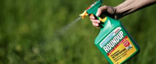 """A woman uses a Monsanto""""s Roundup weedkiller spray without glyphosate in a garden in Ercuis near Paris, France, May 6, 2018"""