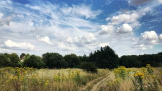 Lye Valley Nature Reserve, Oxford