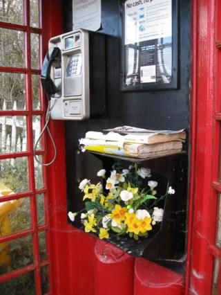 Flowers in a phone box