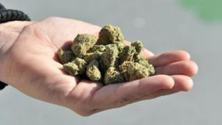 A woman holds a handful of marijuana flower buds, in Vancouver, Canada, on October, 17, 2018.