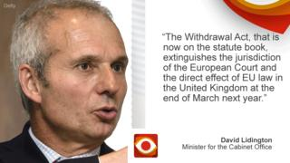 """David Lidington: """"The Withdrawal Act, that is now on the statute book, extinguishes the jurisdiction of the European Court and the direct effect of EU law in the UK at the end of March next year."""""""
