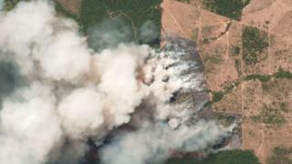 برازیل، ایمیزون آتشزدگی