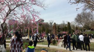 پارکی در شهر تاشکند