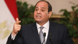 Abdul Fattah al-Sisi (28 January 2019)
