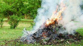 Garden waste burning