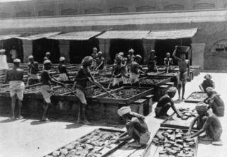 افیون فیکٹری کے مناظر