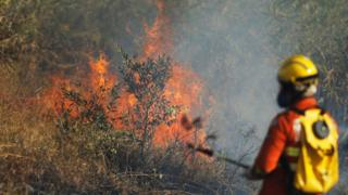 A firefighter attempts to extinguish flames during the dry season in Brasilia, Brazil, on 2 August