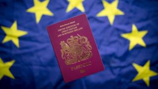 UK passport on EU flag