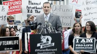 Senator Ted Cruz attends an anti-abortion rally outside the Supreme Court