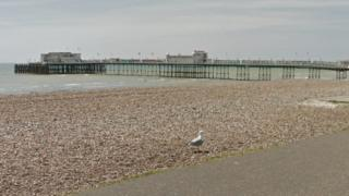 Gull on Worthing beach