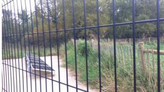 Wetland at Castle Archdale caravan park