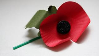 A Remembrance Day paper poppy