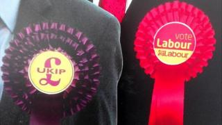 UKIP and Labour rosettes