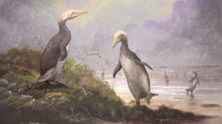 رسم فنان عملاق البطريق.