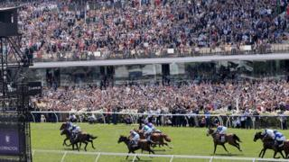 Thousands of race-goers in the stands at Flemington Racecourse watch horse gallop down the final leg of the Melbourne Cup race.
