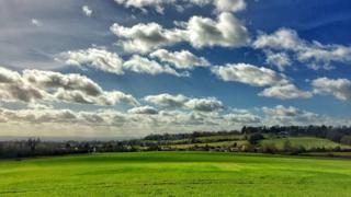 Badley Woods