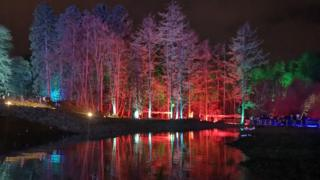 Illuminated trees at Dean Park, Kilmarnock