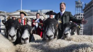 Alan Titchmarsh herds sheep over London Bridge