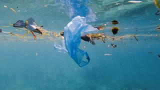 BP: Plastic ban 'could have unintended consequences'