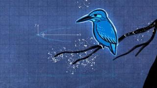 Голубой зимородок: как птица помогла изменить поезд