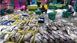 แรงงานต่างด้าวที่ทำงานในตลาดค้าส่งอาหารทะเลแห่งหนึ่งใน จ.สมุทรสาคร