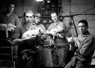 Men holding pigs