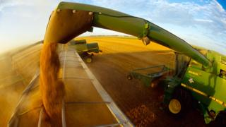 Food and farming policies 'need total rethink'