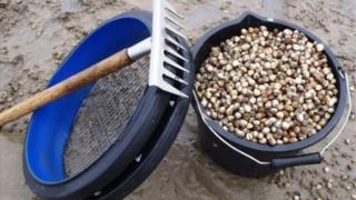 Cockle rake and bucket