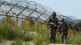 The DMZ is one of the world's most heavily guarded strips of land