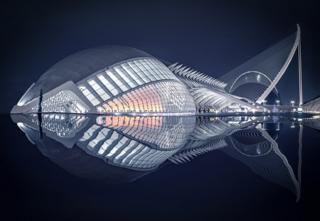 Fish by Pedro Luis Ajuriaguerra Saiz