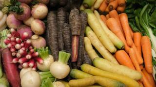 environment vegetables