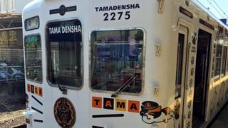 Вагоны поезда, курсирующего по ветке Тамаден, украшены рисунками кошачьих усов, следов кошачьих лап и изображениями Тамы