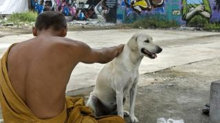 Un prêtre bouddhiste avec son chien, dans une rue de Bangkok (illustration).