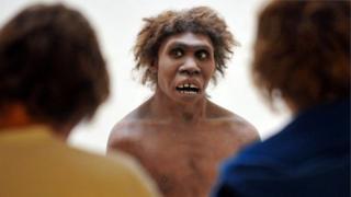 Por que foi o azar, e não a ação do 'Homo sapiens', que acabou com os neandertais