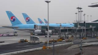 Korean Air planes on the tarmac at the airport