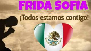 'Frida Sofia: We are all with you'. A meme shared as the rescue efforts in Mexico City are ongoing
