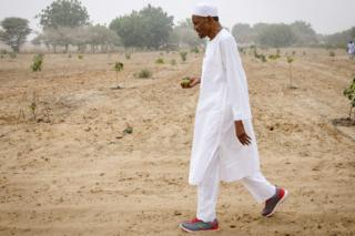 This handout photo taken on December 9, 2017 by the Nigerian State House shows Nigerian President Muhammadu Bihari walking on his farm in Daura, Katsina State.