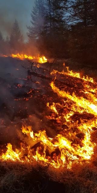 Loch Doon grass fire