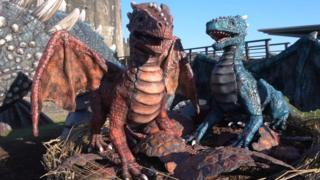 Baby 'dragons'