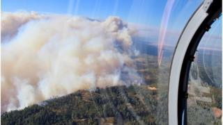 Aerial shot of smoke in forest