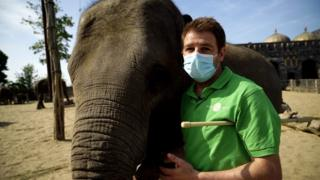 Rob Conachie with elephant